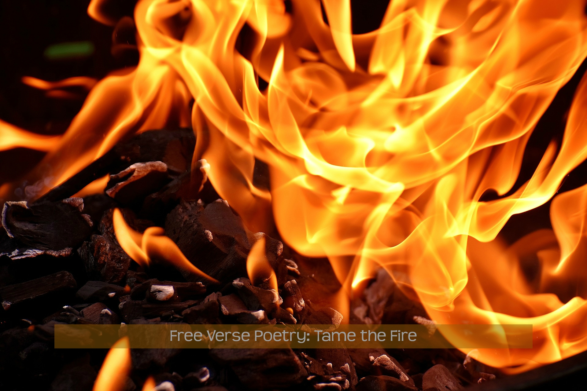 Free Verse Tame the Fire | Wolff Poetry - Publishing & Writing Tools